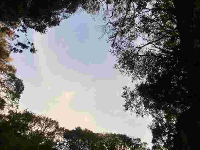 竜宮窟内部から見上げた、自然の天窓。