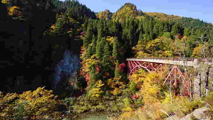 切り立った断崖と落葉樹の森が見事に調和した景勝地、太良峡は白神山地に端を発し、米代川に合流して日本海へと流れ出る藤琴川沿いの渓谷です。