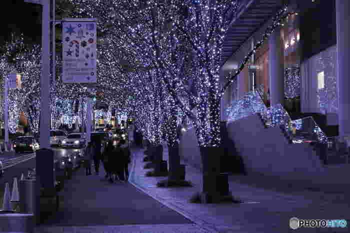 11月7日~12月25日まで楽しめる六本木けやき坂のイルミネーション。雪を思わせるブルー系の灯りがクールに街を彩っています。