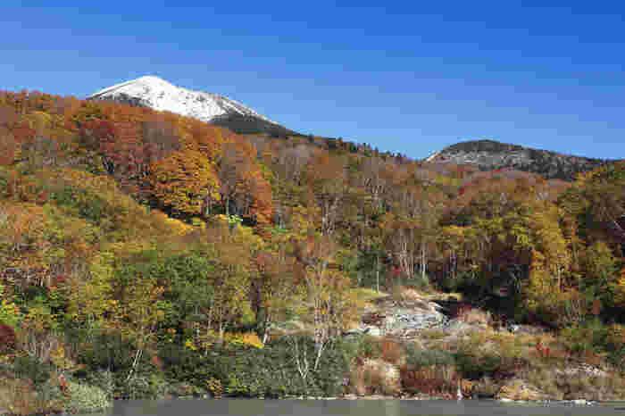 続いては、八甲田山の東に位置する地獄沼。かつての爆裂火口跡に湧き出た温泉がたまってできた沼で、泉温が90度以上にも上ります。恐ろしい名前とは裏腹に、紅葉の時期は彩鮮やか。奥に見える八甲田山に積もる雪と紅葉が、見事なコントラストをなしていますね。