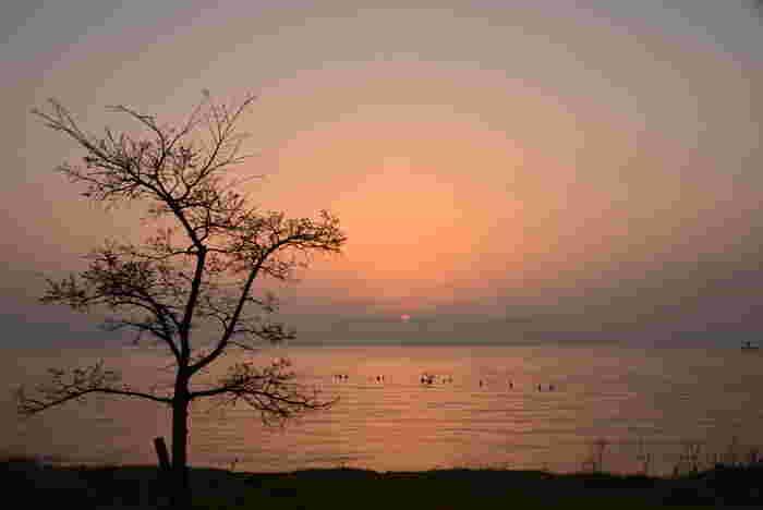 琵琶湖で有名な滋賀県。数々の歴史の舞台としても有名な滋賀県には、魅力的な観光地がたくさんあります。中でも全国から注目されるスポットが「豊郷小学校」です。