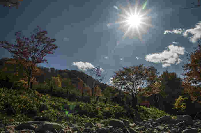 岐阜県を代表するドライビングスポット、紅葉のスポットの一つとされている飛騨せせらぎ街道は、標高差が約700メートルに及ぶ山岳道路でもあります。標高差が700メートルと大きいため、飛騨せせらぎ街道では、比較的長期間にわたって紅葉を楽しむことができます。
