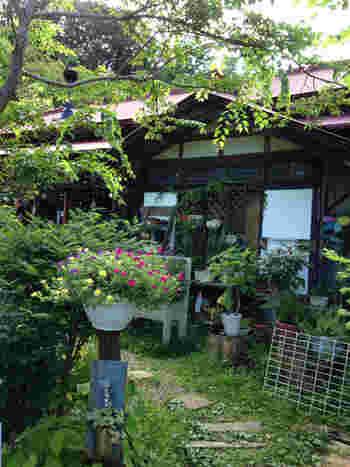 「モカモアコーヒー」は泉から車で15分程、宮城県北部の大和町(たいわちょう)、七ツ森遊歩道の入り口にある古民家を活かしたカフェです。森の隠れ家なので、ちょっと見つけにくいかもしれませんが、探検するようなわくわく感も魅力のひとつ。
