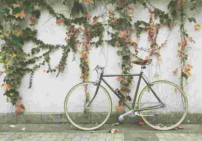 青空の下を軽やかに駆け抜けよう♪今、人気上昇中の「自転車コーデ」をご紹介