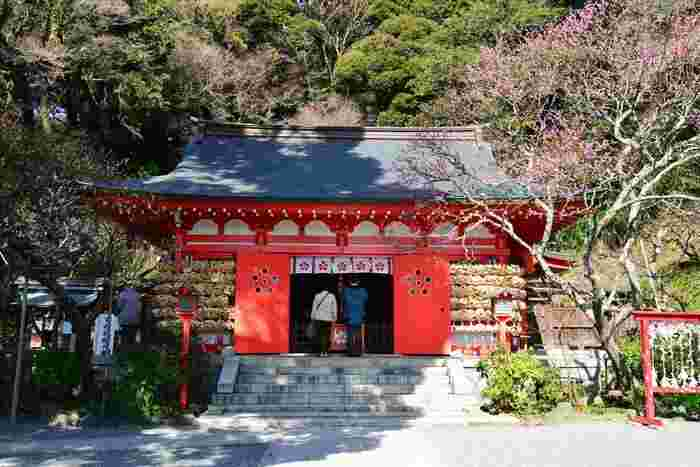 鎌倉にある「荏柄天神社(えがらてんじんじゃ)」も学問の神様、菅原道真公を祀っています。福岡の太宰府天満宮、京都の北野天満宮とあわせて、「日本三大天神」としても知られています。  真っ赤な梅の花模様が、いかにもご利益ありそうですね。お守りの授与所ではていねいにつくられた梅酒をいただくこともできます。鎌倉駅からバスで約8分の場所なので、鎌倉観光の際に寄っても。