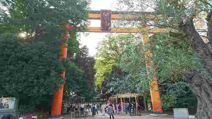 川越の神社仏閣の中でも、特に女性が多く訪れるのが川越氷川神社です。ここには五柱の神さまがおまつりされており、その神様が家族であることから家族円満、また2組の夫婦の神様が含まれていることから縁結びにご利益があるといわれています。