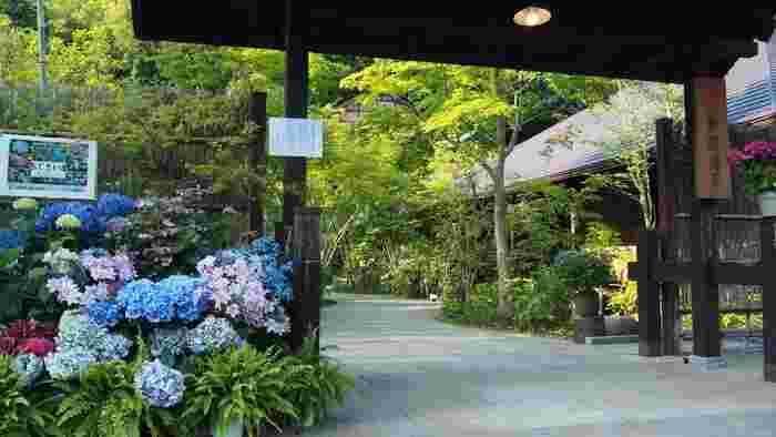 古民家風の里山温泉をイメージした「箱根湯寮」は、19室の貸切個室露天風呂「離れ湯屋 花伝」と、大浴場「本殿 湯楽庵」からなる、森の中の日帰り温泉施設です。