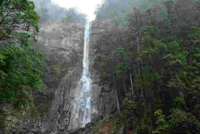 高さ・水量ともに日本一といわれる「那智の滝」。和歌山県の熊野那智大社から階段を登って約15分~20分の場所にあり、那智山信仰の根元として古くから尊ばれてきました。滝の上流には二の滝、三の滝があり、合わせて「那智の大滝」と呼ばれて国の名勝になっています。