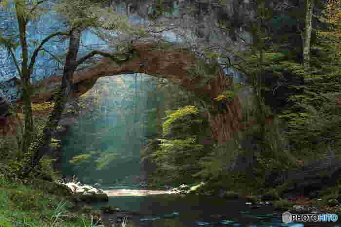 渓谷を流れる川に沿って遊歩道が整備されており、豊かな緑に囲まれてお散歩を楽しむことができます。爽やかな清流の水音に心が洗われるよう。