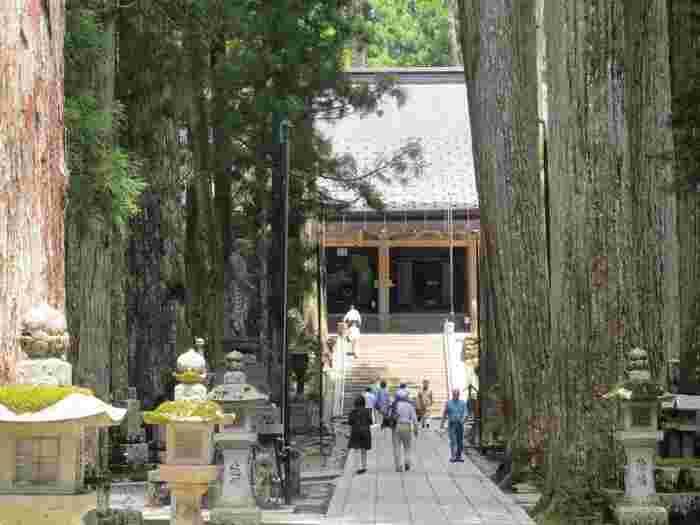 弘法大師御廟は、真言密教信仰の中心です。周囲には、悠久の時間を刻み続けてきた杉の巨木が立ち並んでおり、弘法大師御廟が持つ荘厳で静謐な雰囲気を引き立てています。