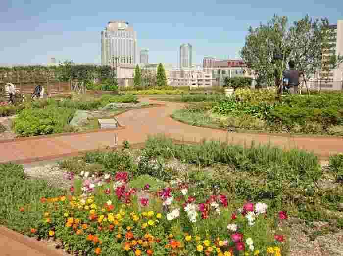 四季折々のお花が植えられていて、癒しの空間になっています。